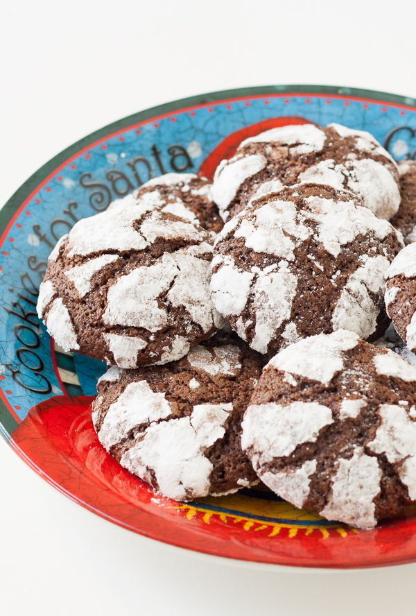Chewy Chocolate Cookies Rolled In Powdered Sugar