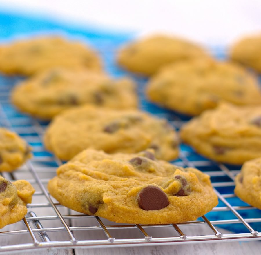 Pumpkin Chocolate Chip Cookies~ Kristine's Kitchen